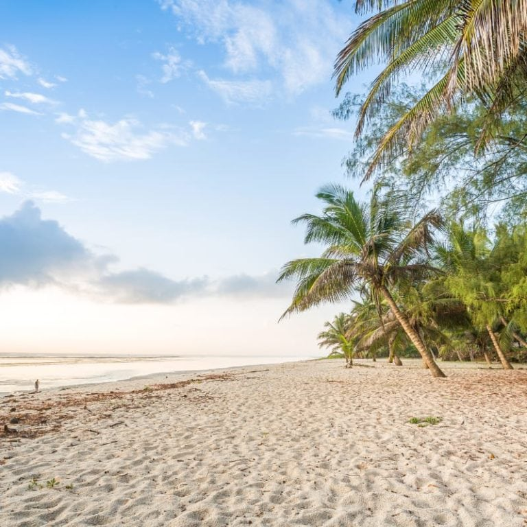 Paradise Tropical Beach in Mombasa